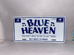 Picture of License Plate